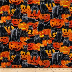 Timeless Treasures Halloween Cats Pumpkin