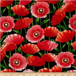 Kanvas New Bloom Poppy Black
