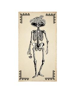 Mrs. Chillingsworth Skeleton 24 In. Panel Natural