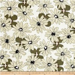 Shadows Paintbox Big Daisy Taupe