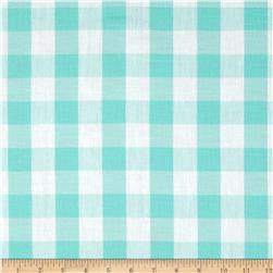 Gingham 1'' Checks Galore Mint