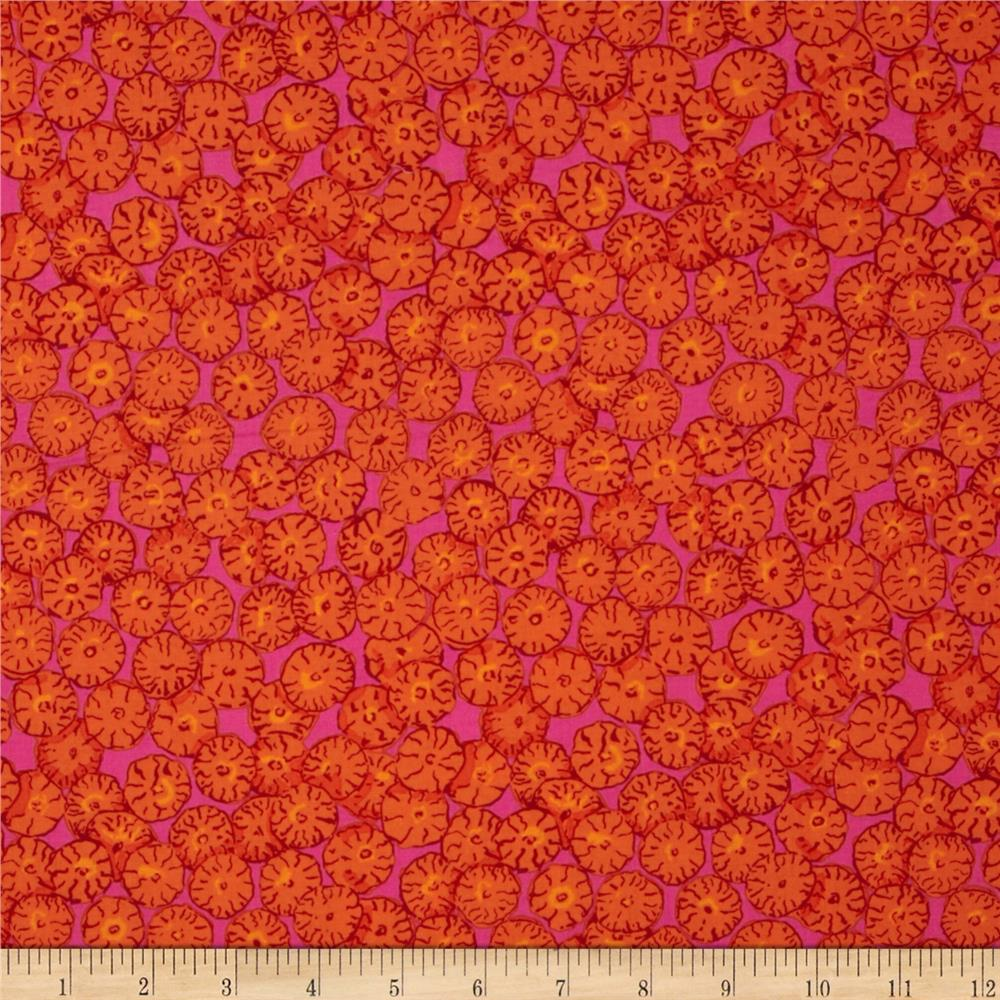 Kaffe Fassett Collective Sand Dollars Orange