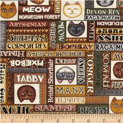Wildcats Cat Words Brown