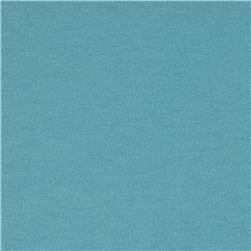 Organic Cotton Jersey Knit Turquoise Fabric