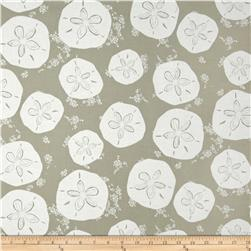Tides Sand Dollar Tan