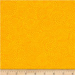 Timeless Treasures Pop Basic Circle Dots Citrus