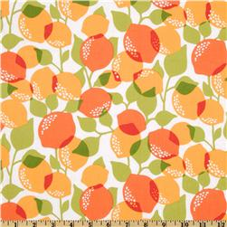 Michael Miller Sorbet Citrus Tree Creamsicle