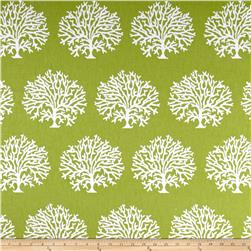 Golding by P Kaufmann Tree Coral Lime