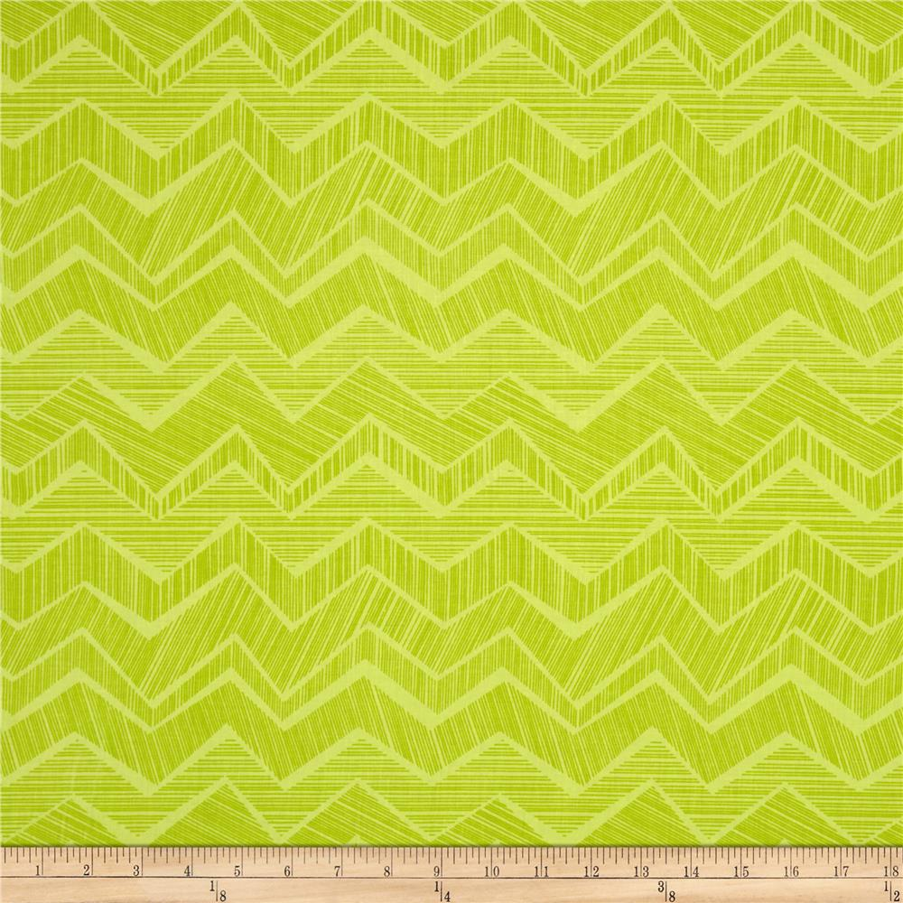 Timeless Treasures Field Study Chevron Spring