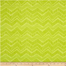 Timeless Treasures Field Study Chevron Spring Fabric