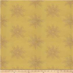 Fabricut  Embroidered Metallic Sunburst  Lime