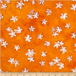 Daisy Love Flannel Daisies Small Sorbet