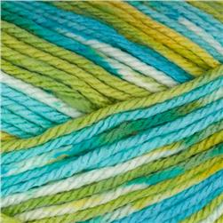 Deborah Norville Everyday Prints Yarn 21 Happy Baby