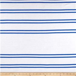Designer Stripe Jersey Knit Royal/White