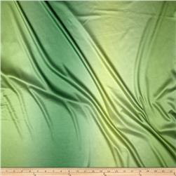 Ombre Single Knit Lime Fabric