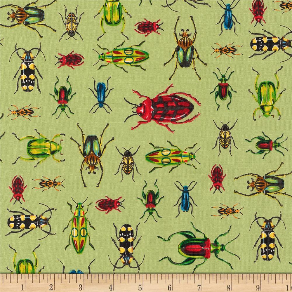 Kaufman Everyday Favorites Bugs Green