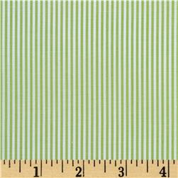 Wide Crease Resistant Pima Stripe Lime