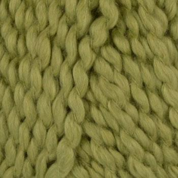 Lion Brand Nature's Choice Organic Cotton Yarn (170) Pistachio