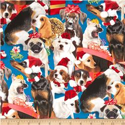 Dogs In Gift Boxes Allover Blue