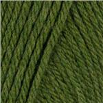 Lion Brand Wool-Ease Chunky Yarn (130) Grass