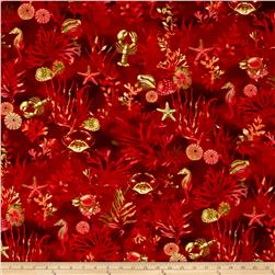 By The Sea Coral Reef Coral Red