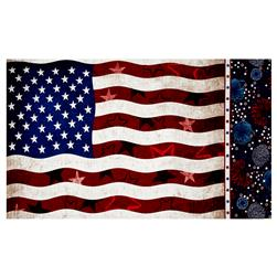 "Kaufman Patriots Flag 24"" Panel Americana"