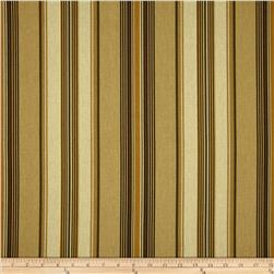 Swavelle/Mill Creek Andari Stripe Buckwheat