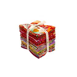 Kaffee Fassett Collective Warm Fat Quarter