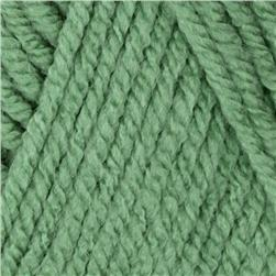 Waverly Yarn for Bernat Simplicity (55205) Greek Sea