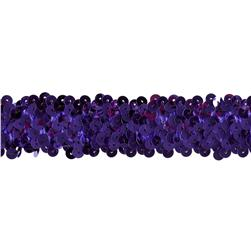 Team Spirit 1.25'' #66 Sequin Trim Plum