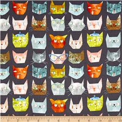 Smarty Cats Faces Grey
