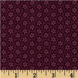 Captivate Daisy Dot Plum