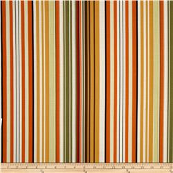 Dear Stella Stripe Multi Fabric