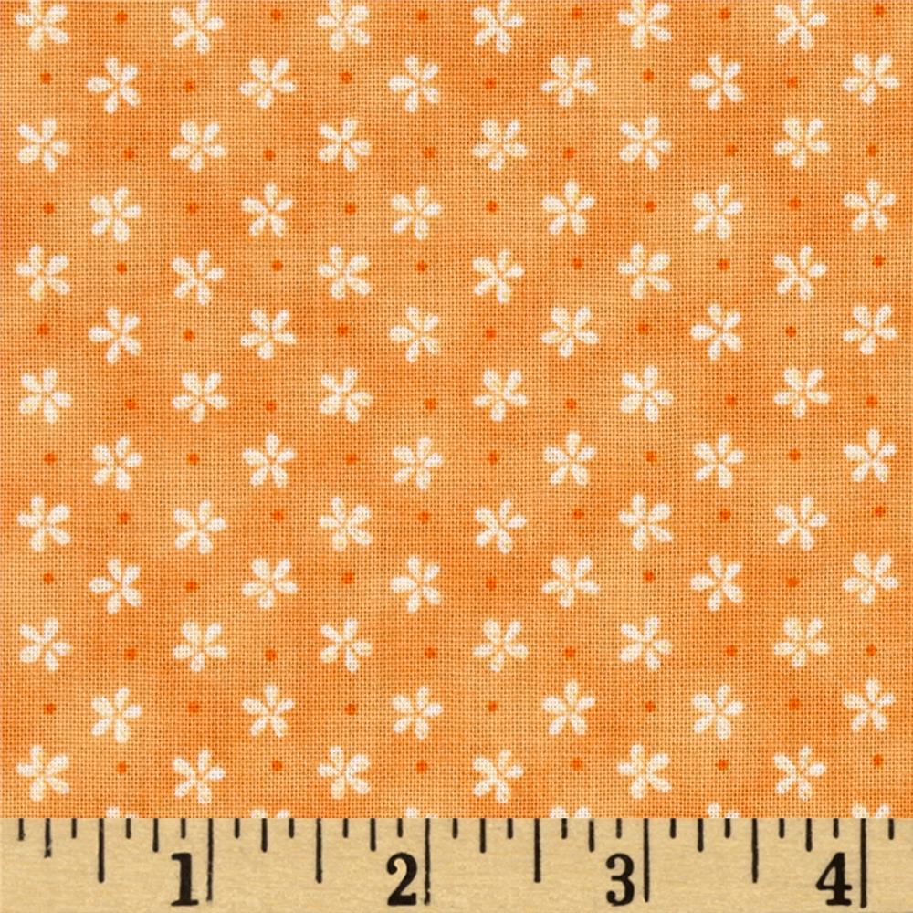 Peaceful Pastimes Mini Daisy w/ Dot Orange