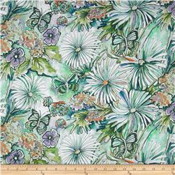 Cottage Garden Daisy Periwinkle