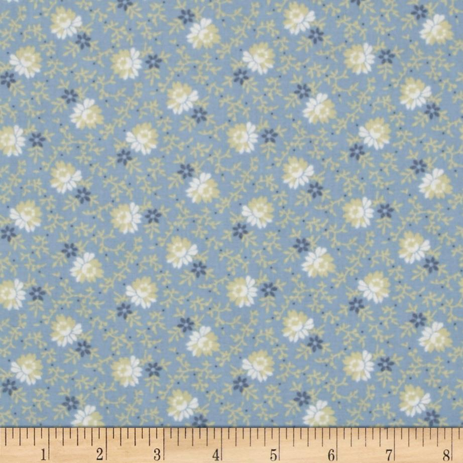 Pointe Pleasant Daisy Flower Blue