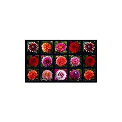 "Digital Garden Flower Blocks 24"" Panel Black"