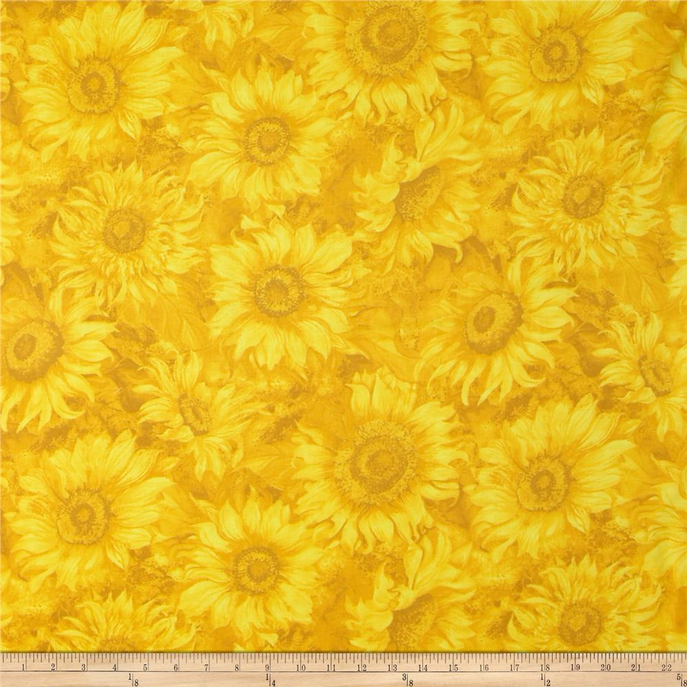 Slice of Sunshine Sunflower Texture Yellow