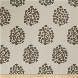 Jaclyn Smith 2617 Dove Gray