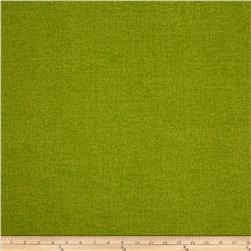 Bryant Indoor/Outdoor Phoenix Linen Kiwi Fabric