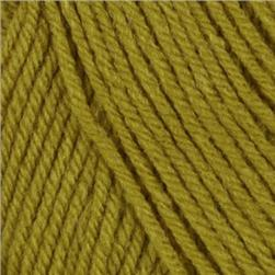 Lion Brand Vanna's Choice Yarn (170) Pea Green