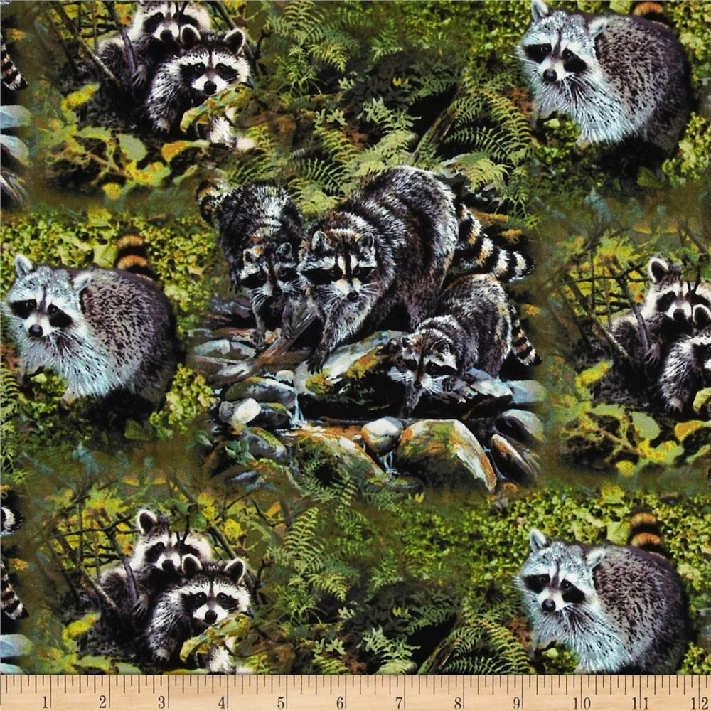 Wild Wings Masked Bandits Scenic Green