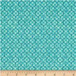 McAnderson's Farm Chicken Wire Light Teal