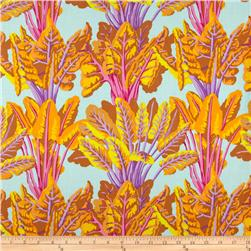 Kaffe Fassett Fall 2012 Collective Chard Spring
