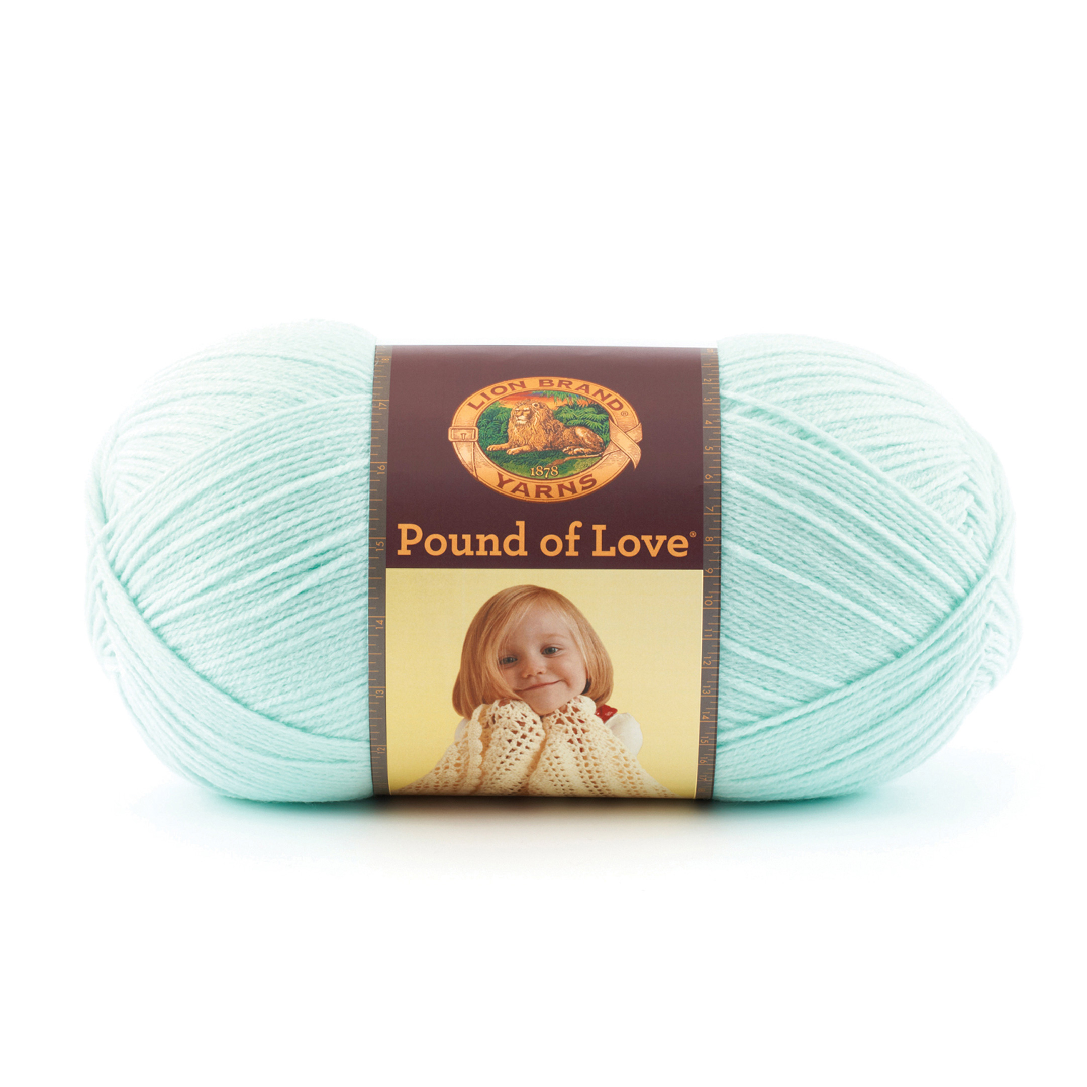 Lion Brand Yarn Pound of Love Pastel Green by Lion in USA