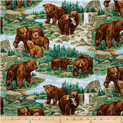 Bears Fishing Landscape Multi