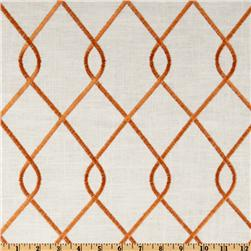 Duralee Home Embroidered Rico Papaya Fabric