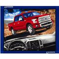 F150 Ford Truck Panel