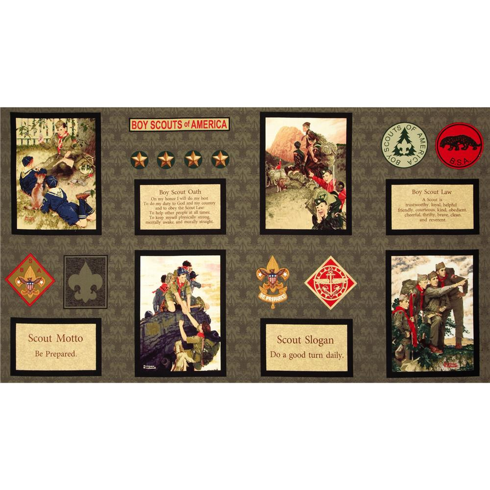 "Boy Scouts of America® Prepared For Adventure Frames 24"" Panel Khaki"