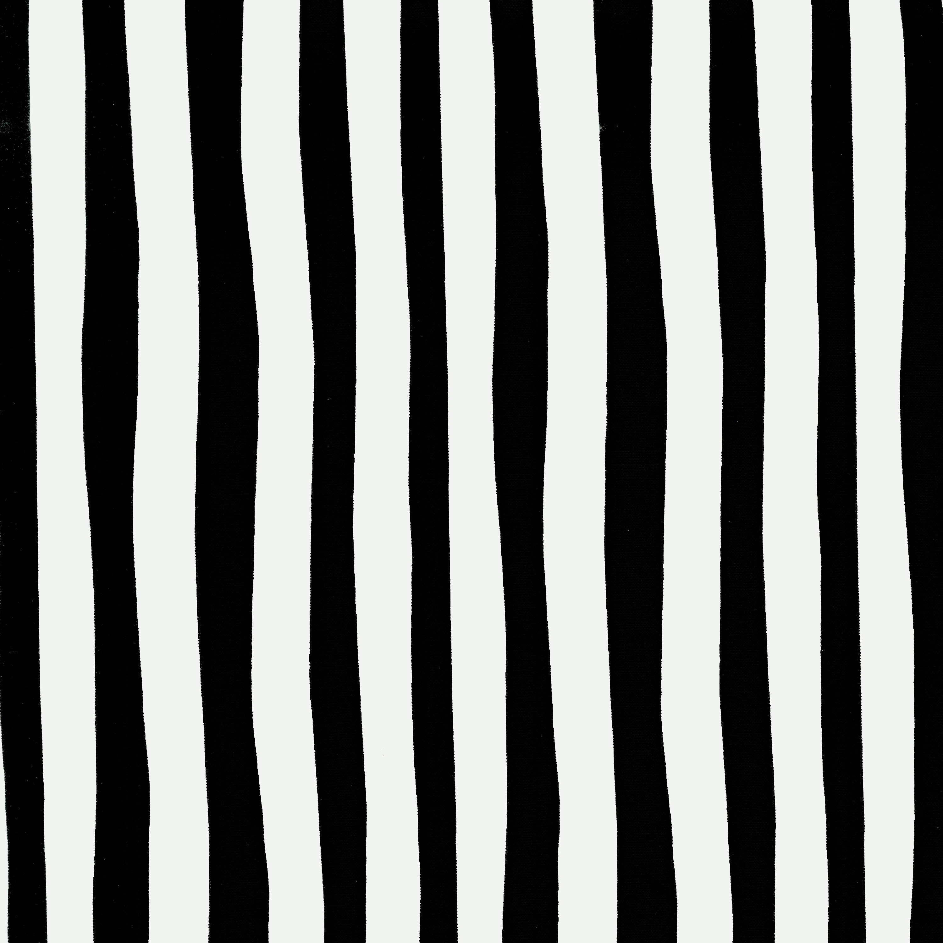 Celebrate Seuss! Squiggle Stripe Black/White Fabric